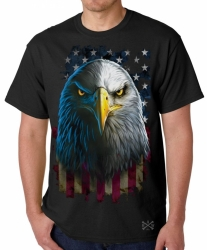 American Eagle Stare T-Shirt